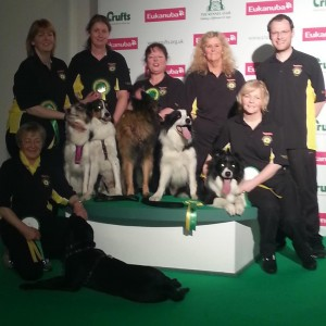 FBI with crufts backgroud